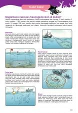 Siri X-VENTURE Makhluk Legenda 11: Misteri Si Ikan Duyung