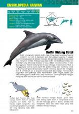 Siri X-VENTURE Dunia Haiwan 07: Gelora Laut Dalam