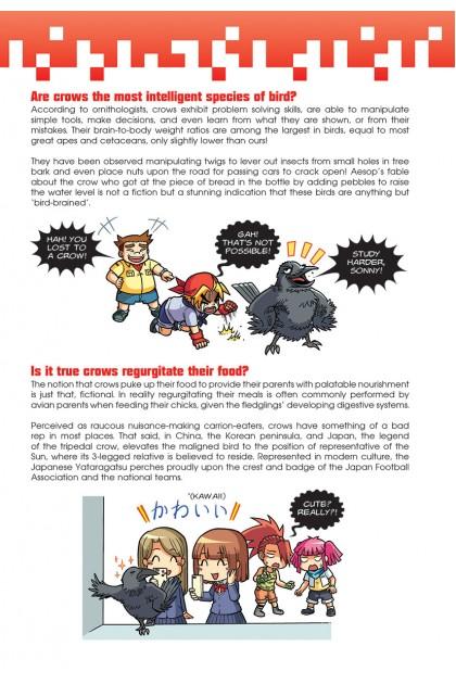X-VENTURE Primal Power II 06: Dark Skies